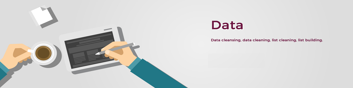 Data Cleansing Services